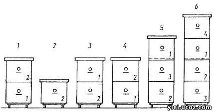 Ргпу схема корпусов
